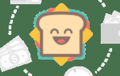 Rapid SEO Tool Crack 2.11.0.22 Enterprise With License Key 2021