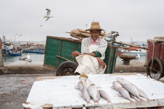 Essaouira, Photo-reportage
