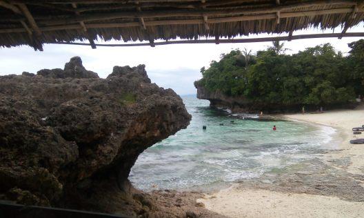 Moalboal (Filipinai)snorkelinimas