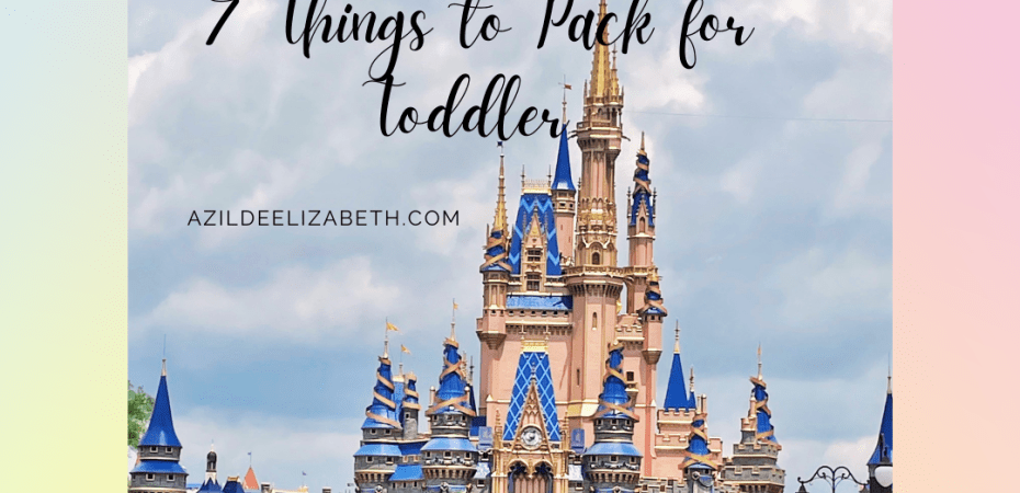 7 disney thing must haves