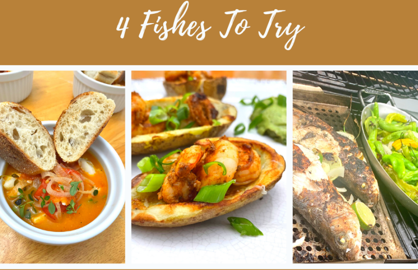 4 fishes to try plus meal ideas
