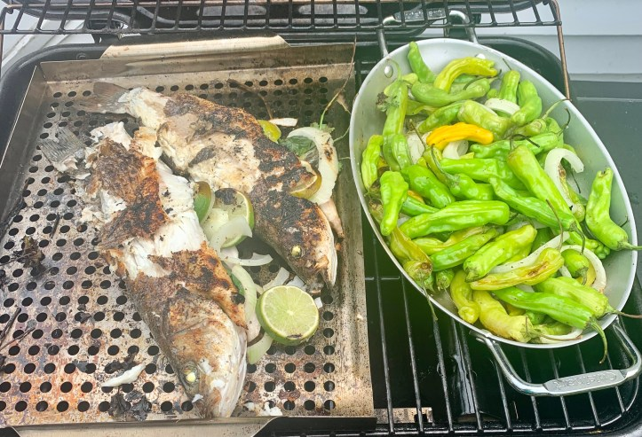 grilled branzino fish served with shishito peppers and onions