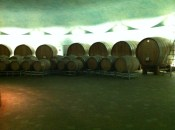 Wine casks in the lower level