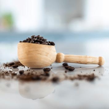Gentry Coffee Scoop