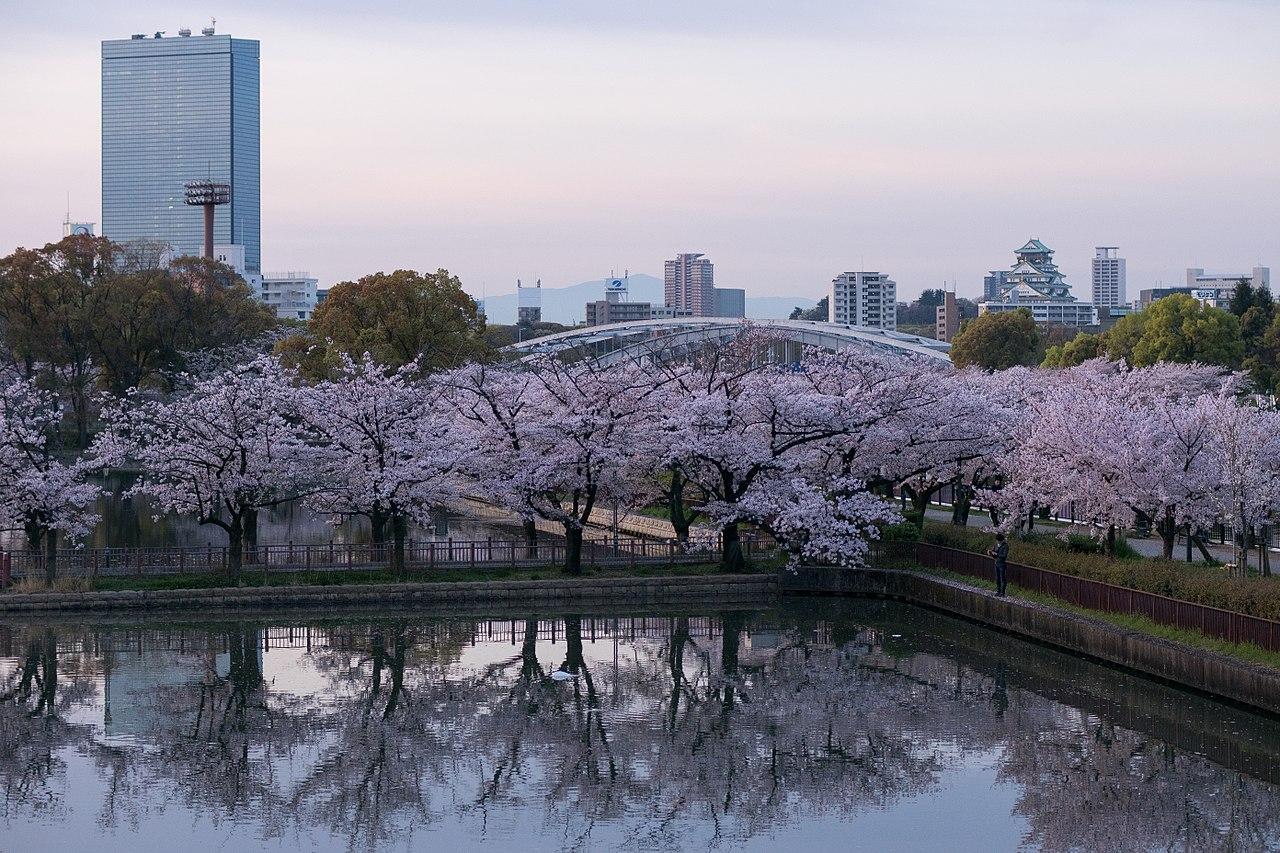 1280px-Kema-Sakuranomiya_Park_2016-04-06_(26899268512)