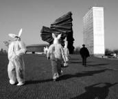 Follow the White Rabbit 2