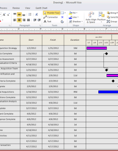 Image also depicting detailed timeline views with visio reports  project rh azlav wordpress