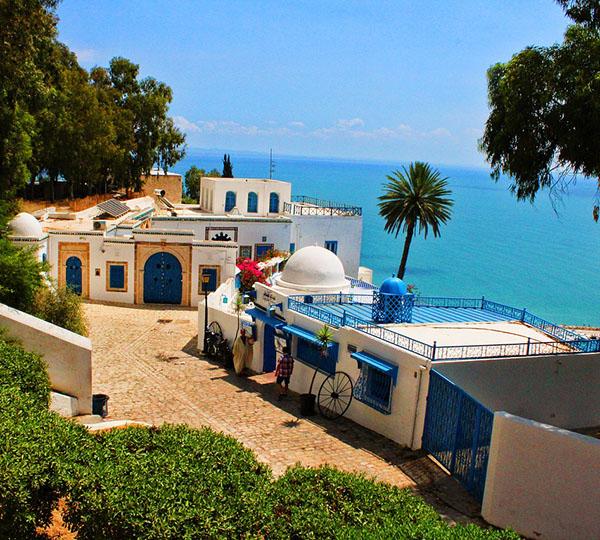 Сади бу Саид Тунис