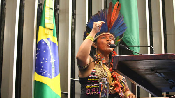 sonia_guajajara_congresso