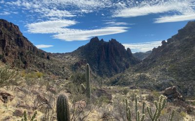 Injunction Sought to Block Oak Flat Land Trade for Massive Arizona Copper Mine