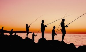 Silhouettes of people fishing