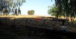 Campo en venta en Ruta 5