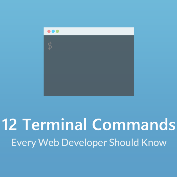 12 Terminal Commands Every Web Developer Should Know About