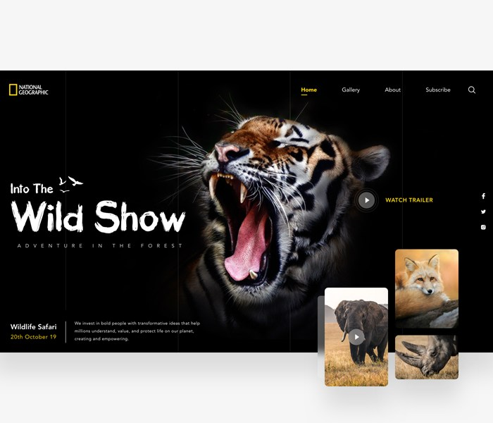 National Geographic Wildlife Website Template