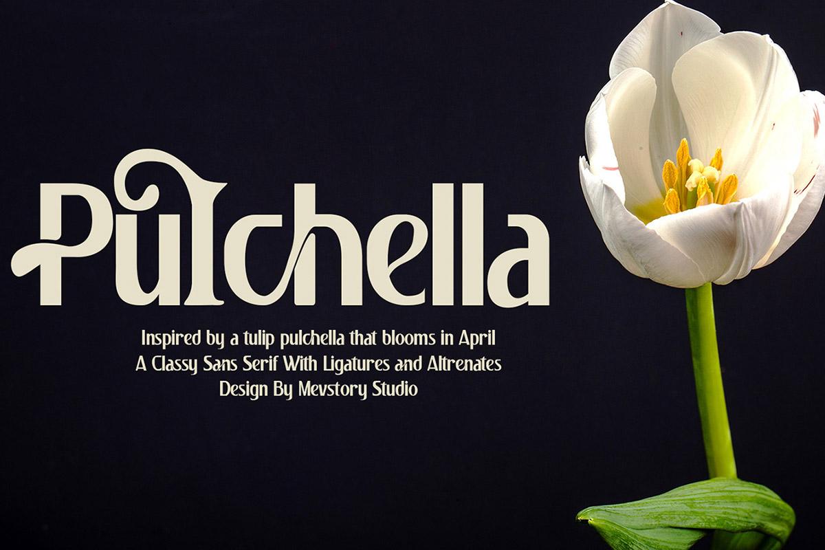 Pulchella Display: Serif Font