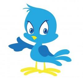 Don't Buy Twitter Followers!