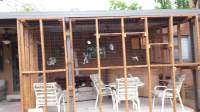How To Build A Patio Enclosure. Learn How To Build A Cat ...