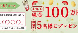 【終了】2018/2/15丸美屋食品工業 家族の初夢キャンペーン クイズで当たる!