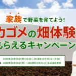 【終了】2018/12/25カゴメ カゴメの畑体験もらえるキャンペーン