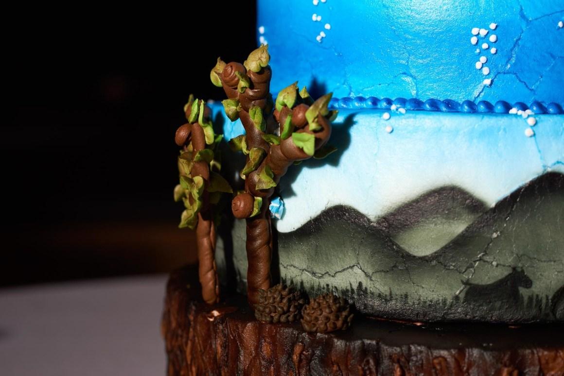 Featured Wedding Cakes - DIY Wedding Cakes - Cake Highlights - Austin Wedding Photographers - Hallie and Johathan Wedding -
