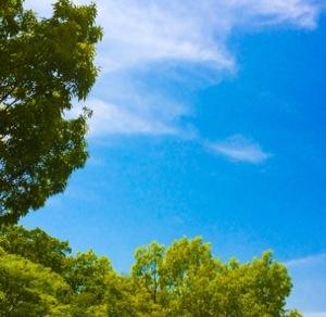 夏のような日差し…!