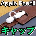 【LENSEN】これさえあればもう無くさない!Apple Pencil用のシリコンキャップ♪【iPad】