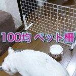 【ダイソー】100均の商品で作ったペットフェンスがコスパ最強だった件!【全部そろえても800円!】