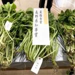 【最優秀賞】わさび丸掘りの部にて長野県知事賞を受賞しました!