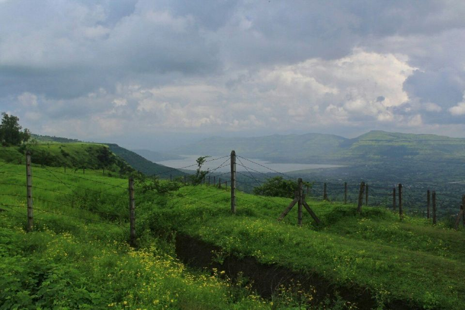312 Kas Pathar Satara - Maharashtra - India - Mumbai daytrip - Mumbai Weekend - Satara - Unesco - Valley of flowers - Travel - Azure Sky Follows
