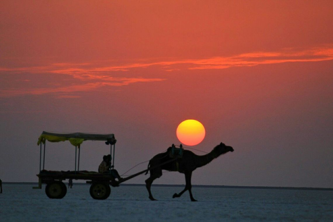 Sunset in White Rann