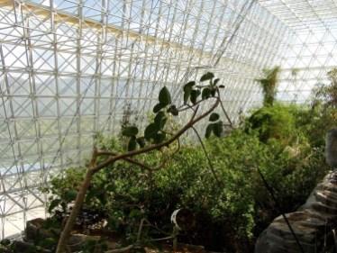 Biosphere4