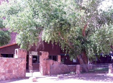 supai-lodge