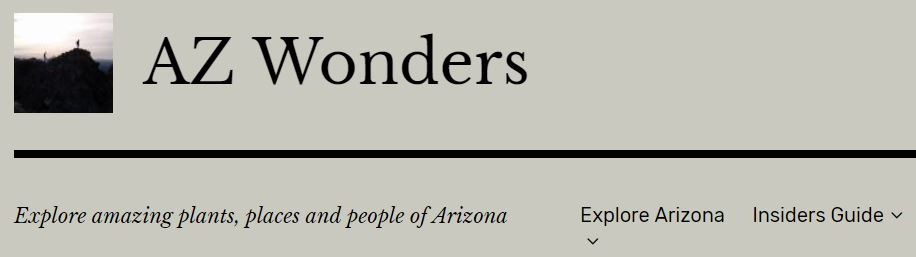 Screen shot of AZ Wonders home menu