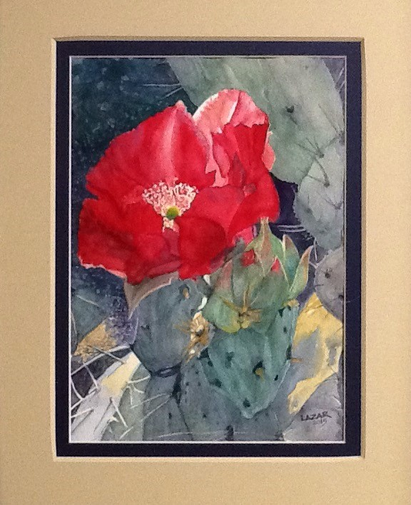 """Screamin' Scarlett"" a watercolor of a Prickly Pear in bloom."