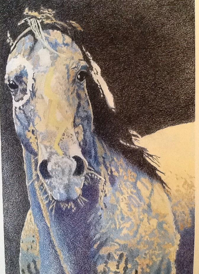 """""""Blue War Horse"""" color pencil"""