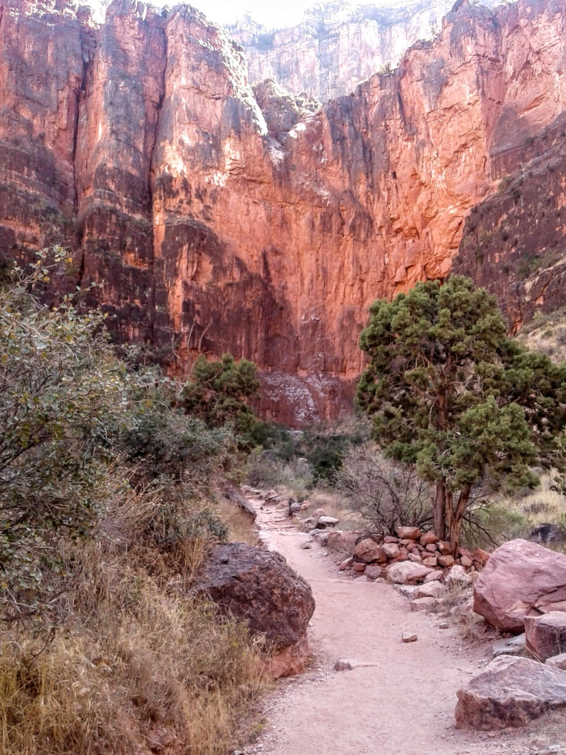 hiking trail leads toward red canyon walls in distance