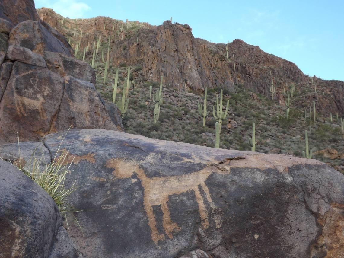AZ-Wonders-Gold-Canyon-Hieroglyphic-Trail-8