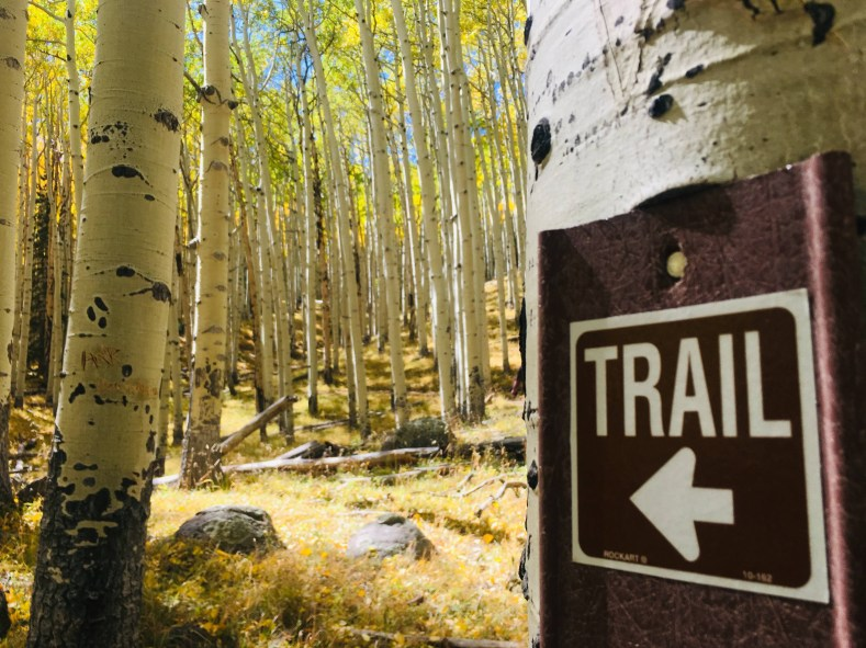Trail sign points way to Inner Basin Trail through aspen trees with golden leaves