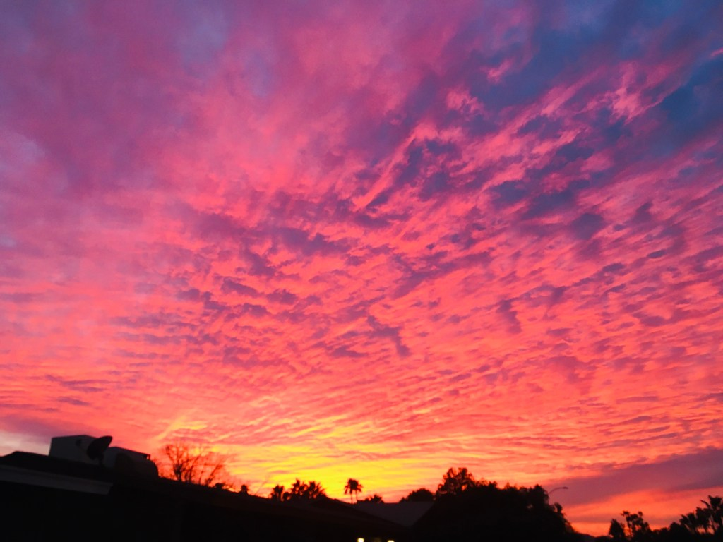 Sky streaked with pink and orange clouds