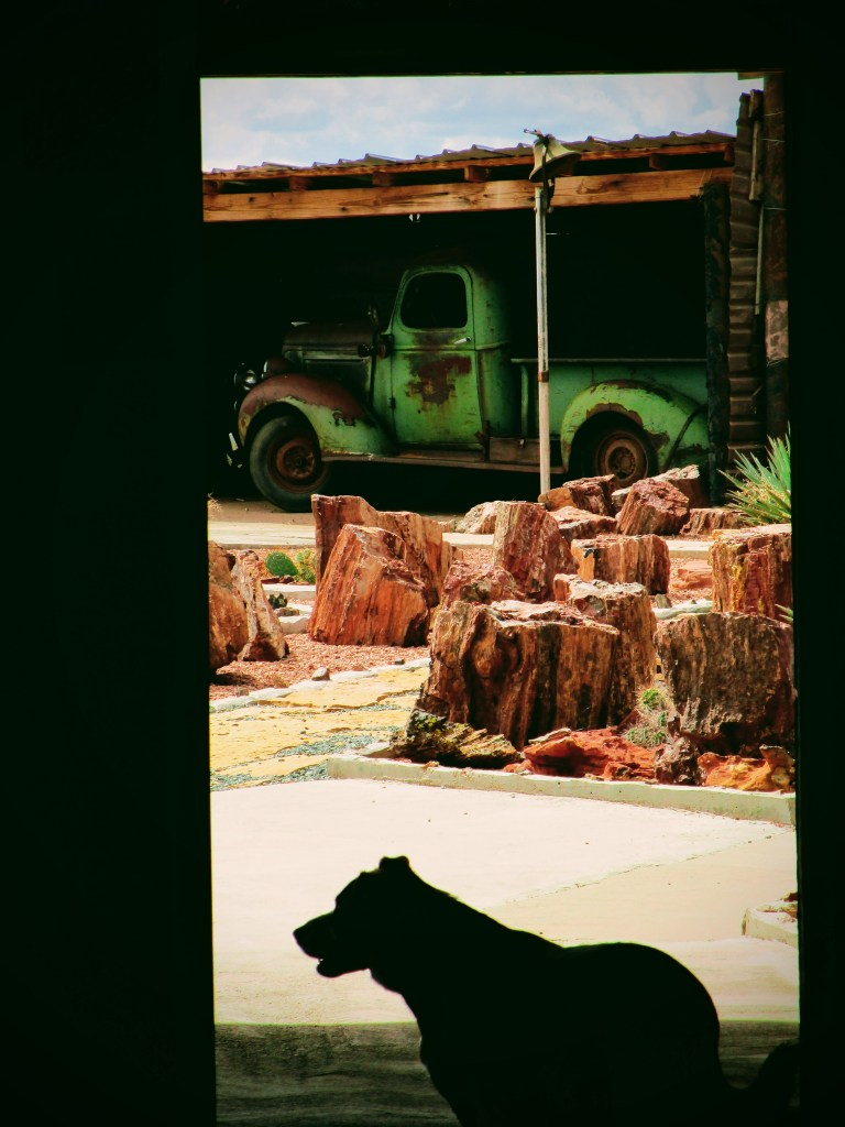Rock Art Ranch pup and truck