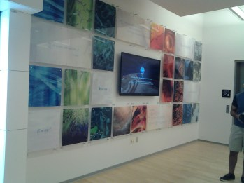 The entrance: Visualizations by various NCSA projects