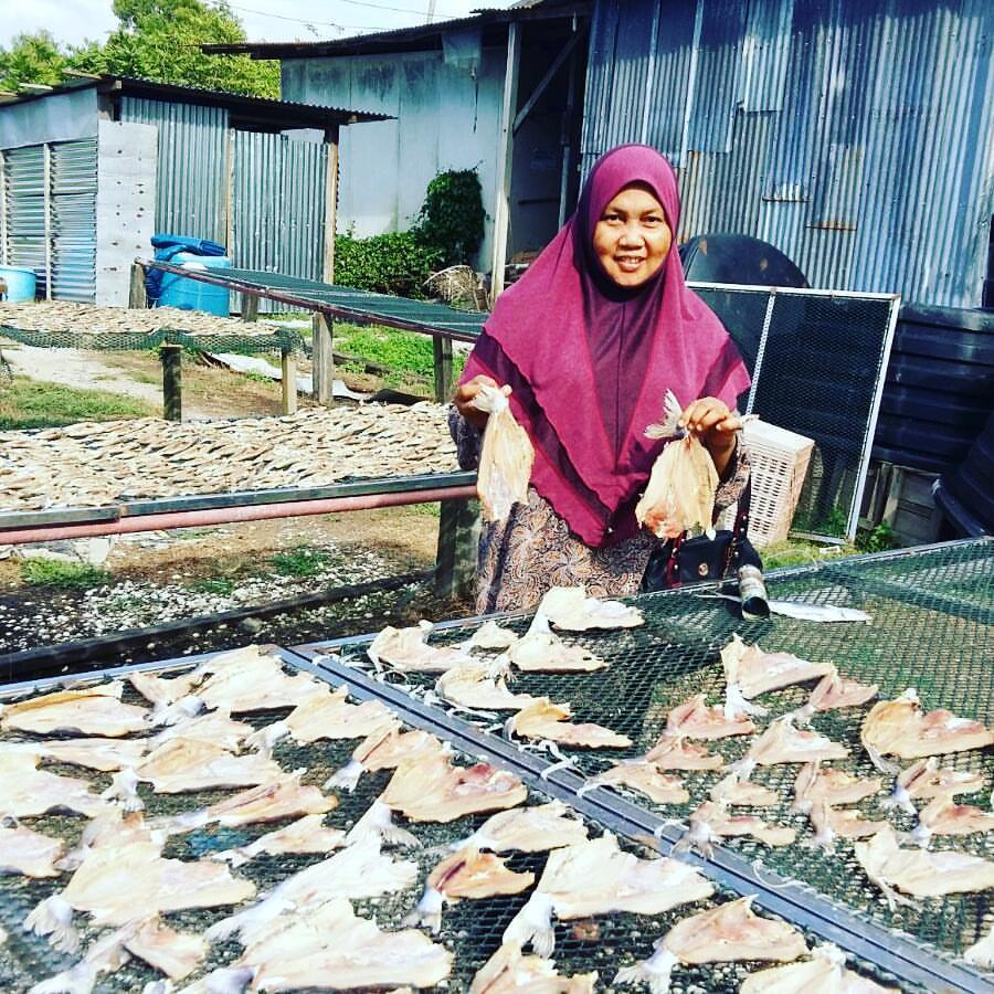 Lawatan Ke Tempat Penghasilan Ikan Kering Tanjung Dawai