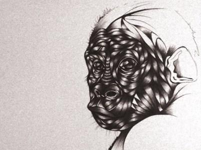 The Ark Project - Gorila, por Toyin Odutola (Sudáfrica)