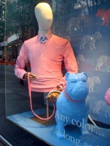 El perro de moda en NY en la vidriera de la marca PINK