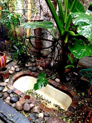 Pequeño jardín de Querida Elena. Foto