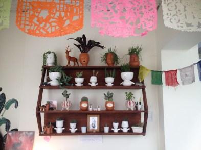 Maridajes de pequeñas plantas y macetas. Foto