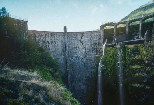 Green Film Fest: Damnation. Foto
