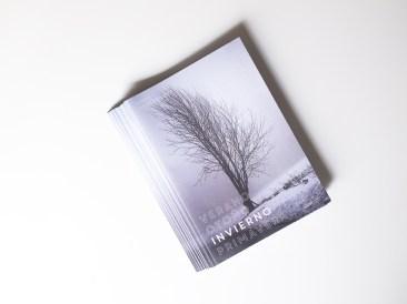 #3: Invierno