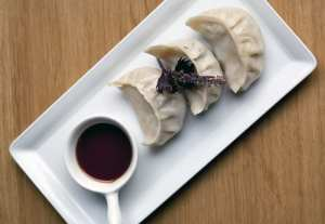 yum-yum-gyoza-chicken-dumplings