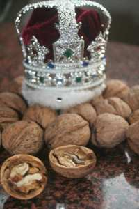 The Walnut, known to the Roman's as The Royal Acorn